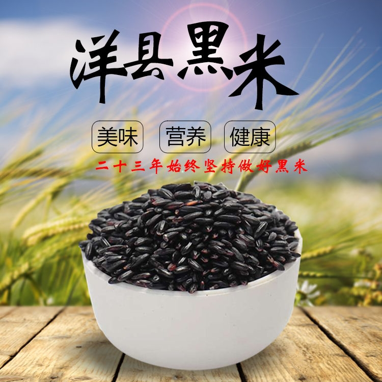陕西洋县黑米有机杂粮3kg礼盒装大米