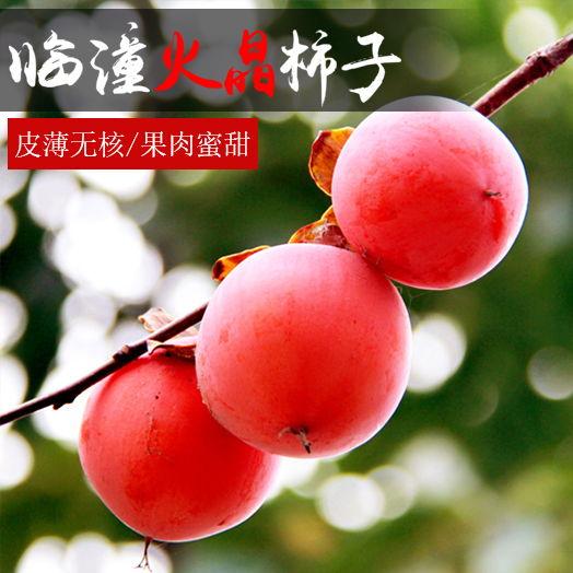 陕西临潼柿子12斤100元礼盒装包邮