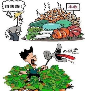 农产品滞销自由免费发布信息平台