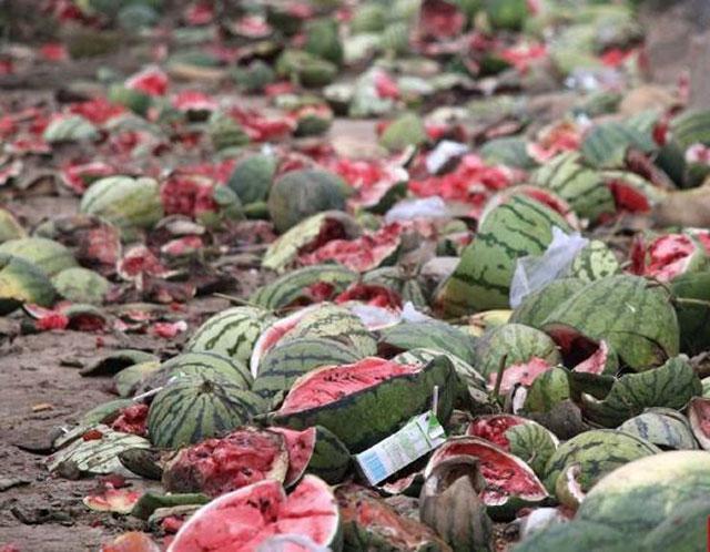 2017年农产品不断出现滞销,农民的出路在何方?